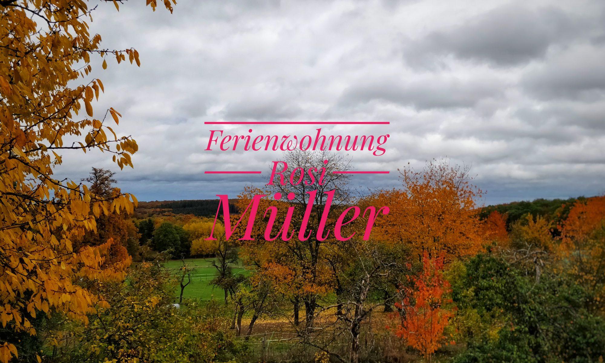 Ferienwohnung Rosi Müller